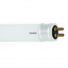 Лампа люминесцентная G13 T8 15Вт 54-865 452мм Camelion (25)